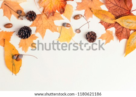 Border made of dried autumn leaves, cones and acorns on light background. Autumn composition. Flat lay, top view, copy space. #1180621186