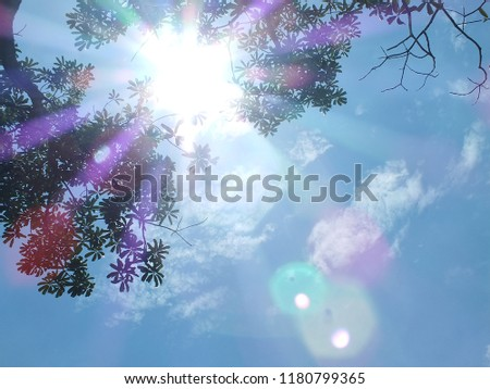 Another view is a tree with a sky background and the sun shines. #1180799365