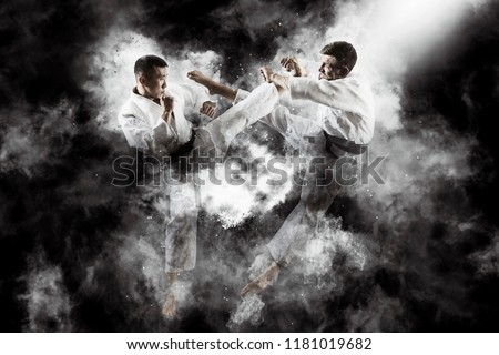 Martial arts masters, karate practice. Two male karate fighting  Royalty-Free Stock Photo #1181019682