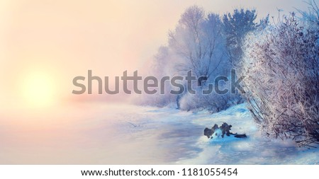 Beautiful Winter landscape scene background with snow covered trees and ice river. Beauty sunny winter backdrop. Wonderland. Frosty trees in snowy forest. Tranquil winter nature in sunlight. Christmas
