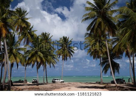 Maragogi, Alagoas / Brazil - 09/13/2015: Ponta do Mangue Beach #1181121823