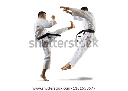 Martial arts masters, karate practice. Isolated background Royalty-Free Stock Photo #1181553577