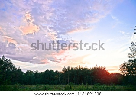 Beautiful evening landscape already with dark trees. Autumnal summer background for design #1181891398