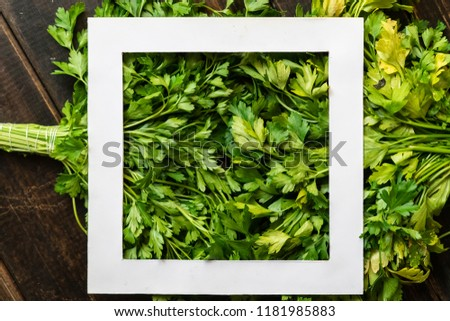 fresh raw green parsley herb bunch with white square frame on top copy space creative design #1181985883