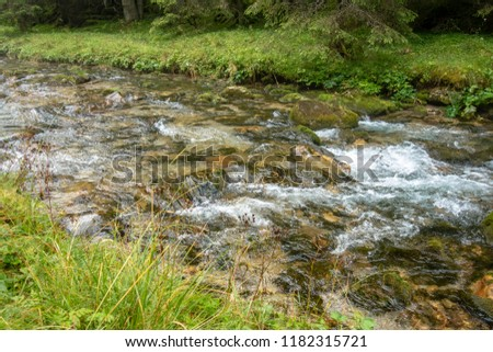 Fast river near forest in Bucegi mountains,  Romania  #1182315721