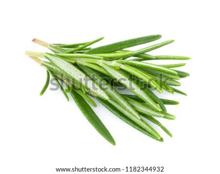 Rosemary isolated on white background #1182344932
