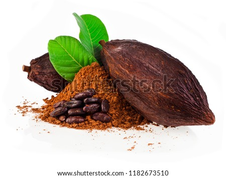 Cocoa pods and cocoa beans and cacao powder with green leaves isolated on white background #1182673510