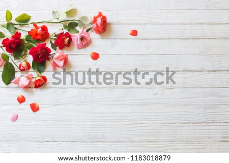 roses on white wooden background #1183018879