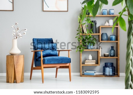 Blue armchair next to wooden table with white flowers in grey flat interior with plants. Real photo #1183092595