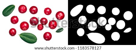 Lingonberry (fruits of Vaccinium vitis-idaea) with leaves, top view #1183578127