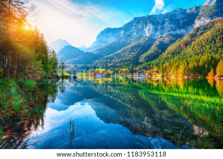 autumn sunset of Hintersee lake. Beautiful scene of trees near turquoise water of Hintersee lake. Location: resort Ramsau, National park Berchtesgadener Land, Upper Bavaria, Germany Alps, Europe #1183953118