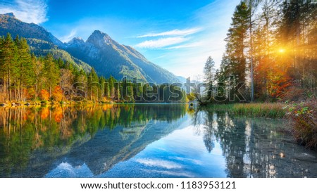 autumn sunset of Hintersee lake. Beautiful scene of trees near turquoise water of Hintersee lake. Location: resort Ramsau, National park Berchtesgadener Land, Upper Bavaria, Germany Alps, Europe #1183953121