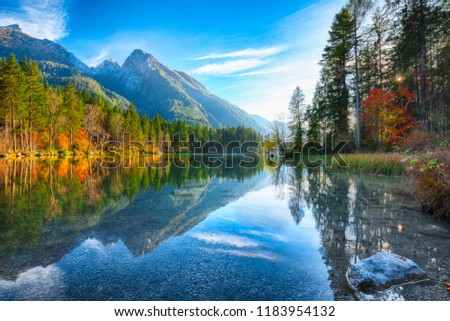 autumn sunset of Hintersee lake. Beautiful scene of trees near turquoise water of Hintersee lake. Location: resort Ramsau, National park Berchtesgadener Land, Upper Bavaria, Germany Alps, Europe #1183954132