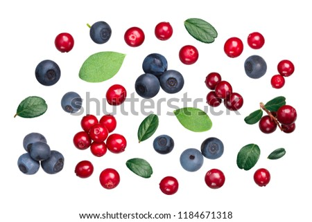 Lingonberry and Bilberry (fruits of Vaccinium vitis-idaea, V. myrtiilus) with leaves, top view #1184671318