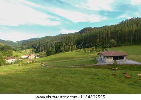 Basque Country tradicional house in Oma,  landscape #1184802595