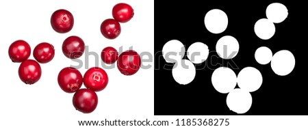 Lingonberry (fruits of Vaccinium vitis-idaea), top view #1185368275