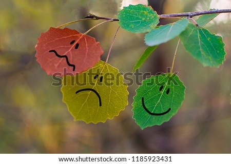 Feedback concept on autumn leaves green, yellow & red. Giving feedback rating & review happy, neutral or sad bad face leaf icons. Customer survey. Nature abstract feedback business question concept #1185923431