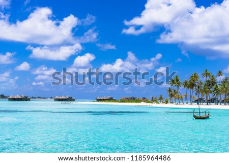sea of the coral reef of the indian ocean #1185964486