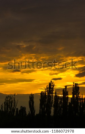 Landscape with dramatic light - beautiful golden sunset with saturated sky and clouds. #1186072978