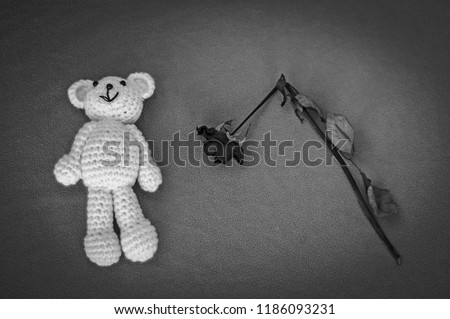 A soft teddy bear, toy for a newborn baby with a dry broken rose, isolated on a gray background. Sudden infant death syndrome stock image. Child death, abuse, harassment, rape, abortion, abort concept #1186093231
