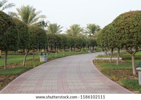 park green garden  #1186102111