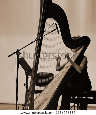 Harp player. Classical musician harpist playing harp. Female musician playing the harp. #1186276384