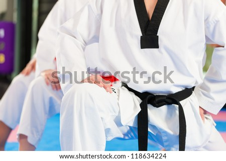 People in a gym in martial arts training exercising Taekwondo, the trainer has a black belt #118634224