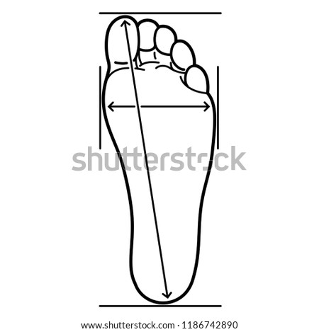 Defining correct shoe size (foot size). Measuring the distance between the marks. Shoe-size systems. Vector flat outline icon illustration isolated on white background.