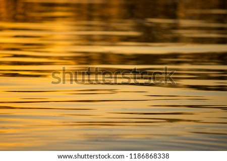 water background in colorful sunset light.