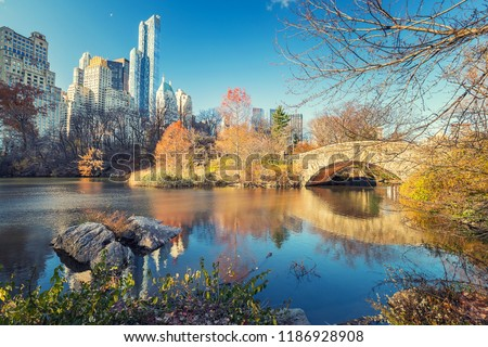 The pond in Central park in New York City at autumn day, USA #1186928908