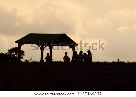 sunset silhouette lavender field #1187166832