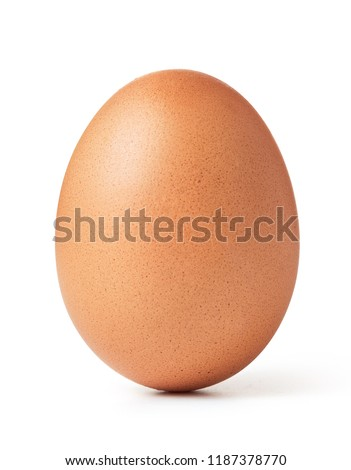 chicken egg isolated on white background #1187378770