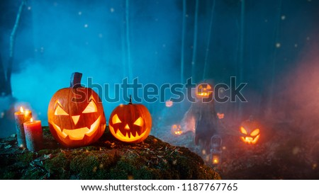 Spooky halloween pumpkins in forest. Scary halloween background with free space for text. #1187767765