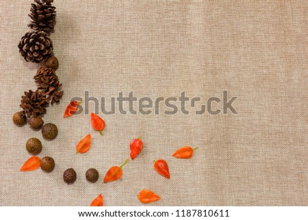 Rustic Wooden Vine Leaves Objects Creative Flatlays #1187810611