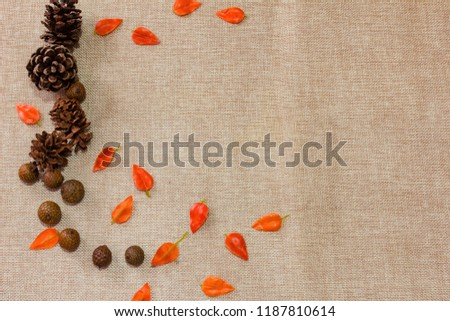 Rustic Wooden Vine Leaves Objects Creative Flatlays #1187810614