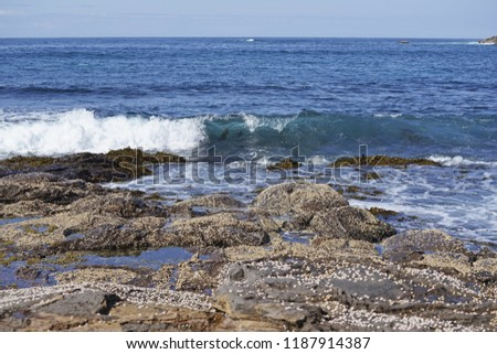 Wave approaching shell covered rocks or boulders by the coast, the horizon in the distance.                      #1187914387