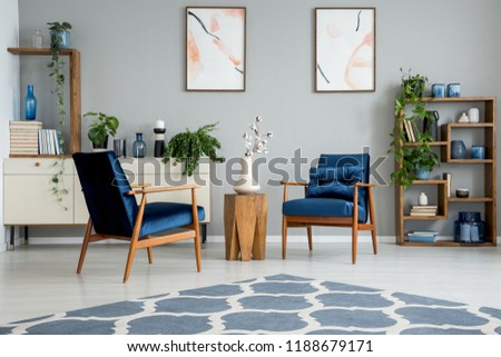 Blue carpet in grey living room interior with posters and wooden table between armchairs. Real photo #1188679171