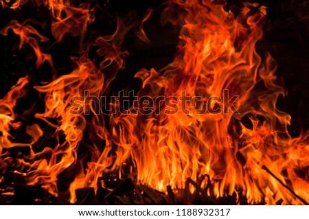 Beautiful natural flame #1188932317