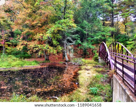 Black rock state park steel bridge in the fall in Torrington new england Connecticut United states. #1189041658