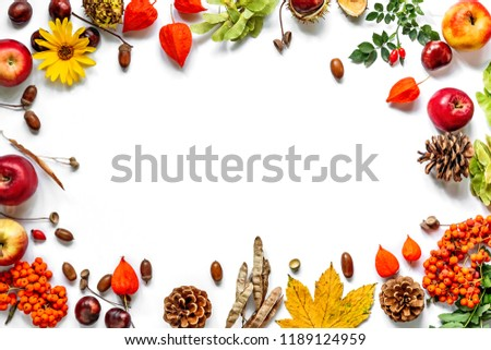 Vintage border from fallen leaves, chestnuts, cones, rowan, flowers and fruits on the white. Thanksgiving autumnal background. #1189124959