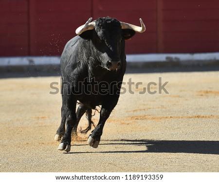 bull running in spain #1189193359