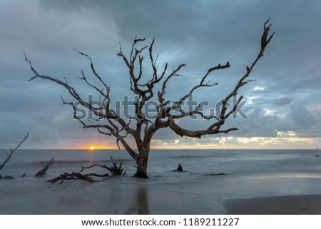 Beautiful sunrise at Driftwood beach Royalty-Free Stock Photo #1189211227