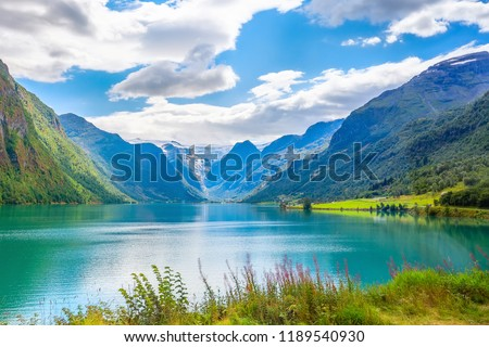 Norwegian landscape with Nordfjord fjord, mountains, flowers and glacier in Olden, Norway #1189540930