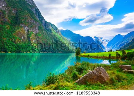 Norwegian landscape with Nordfjord fjord, mountains, flowers and glacier in Olden, Norway #1189558348