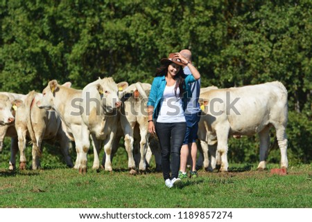 A herd of white cows #1189857274
