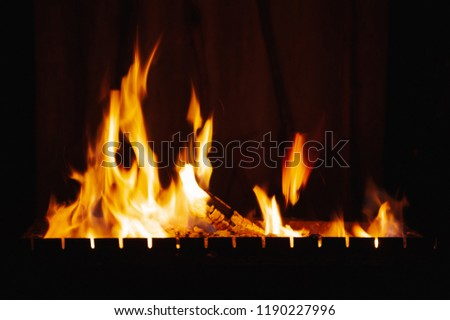 Bright burning wood in a camping on a black background