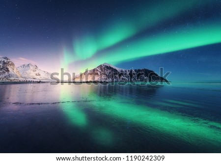 Northern lights in Lofoten islands, Norway. Green Aurora borealis. Starry sky with polar lights. Night winter landscape with aurora, sea with sky reflection, rocks, beach and snowy mountains. Nature #1190242309