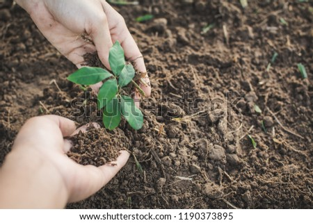 Human hand planting little green sprout , concept save the world. #1190373895