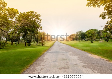 Empty street with comfortable great garden park and green grass field, green tree plant in mornig time. #1190772274