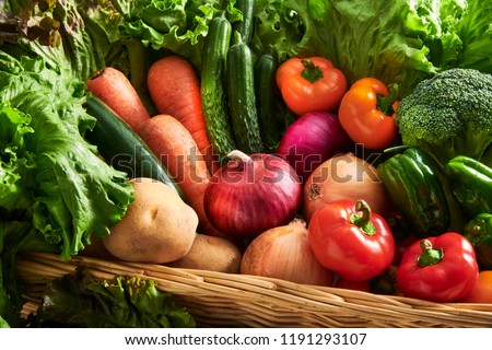 A collection of fresh and delicious vegetables #1191293107